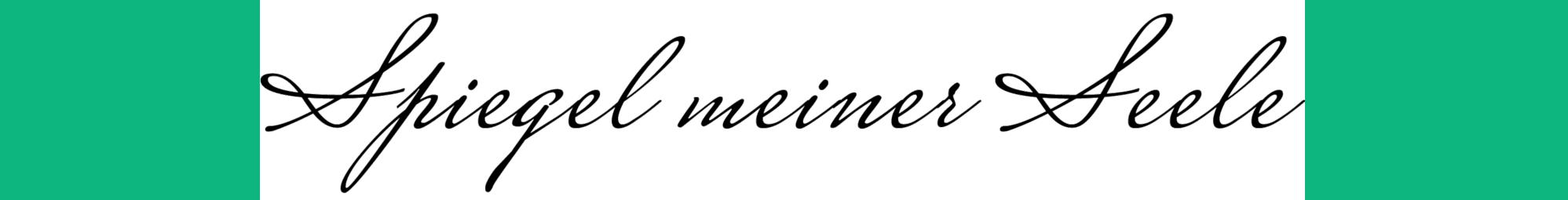 Spiegel meiner Seele Logo
